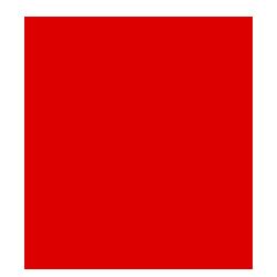 imlek 2017_tahun ayam